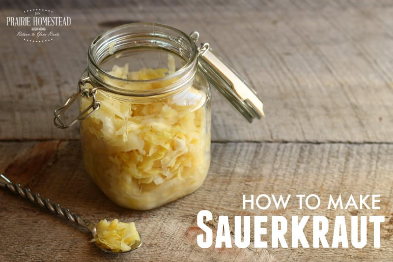 Visit: http://www.theprairiehomestead.com/2015/02/how-to-make-sauerkraut.html